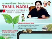 An Infography on Green Revolution in Tamil Nadu