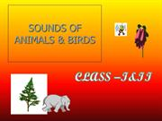 animals & their sounds