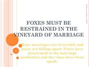 FOXES MUST BE RESTRAINED IN THE VINEYARD OF MARRIAGE