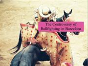 The Controversy of Bullfighting in Barcelona