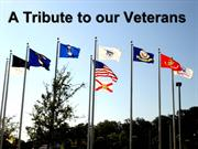 Veteran's Day tribute