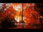1-AUTUMN 16 Sun-View from within-Adam Hurst