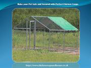 Make your Pet Safe and Secured with Perfect Chicken Coops