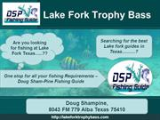 Lake Fork Fishing, Lake Fork Fishing Guides, Bass Fishing Texas