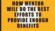 How Business Mentor or Business Consultant Will Do The Best Efforts
