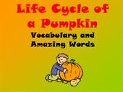 Pumpkins Vocabulary and Amazing words