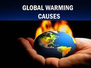 Causes of Global Warming  | Brian Yusem