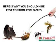 HERE IS WHY YOU SHOULD HIRE PEST CONTROL