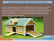 Invest In Chicken Coops for Better Yield from Your Poultry Business
