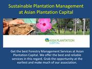 Sustainable Plantation Management at Asian Plantation Capital