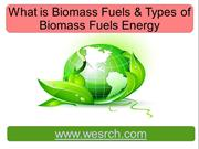 What is Biomass Fuels & Types of Biomass Fuels Energy
