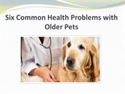 Six Common Health Problems with Older Pets
