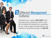 How Management Cultures Help Organizations Learn