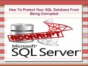 SQL Server Database Corruption