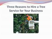 Three Reasons to Hire a Tree Service for Your Business