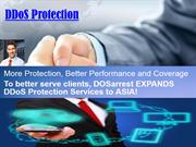 DDoS Protection Security Is Its Main Priority!