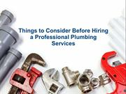 Things to Consider Before Hiring a Professional Plumbing Services