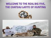 Realbig5, international Hunting Consultants