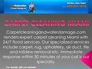 Best carpet cleaning services in Miami at carpetcleaningandwaterdamage