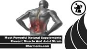Most Powerful Natural Supplements Prevent Muscle And Joint Strain