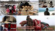 2016 _Pictures of the month_JANUARY - Jan 16 - Jan 22