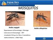 aedes 2016