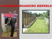 Kennels Poole