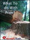 What To do With Pride