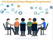 Hire Dedicated Expert Magento Programmers