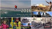 2016 - Pictures of the month _FEBRUARY - Feb 09 - Feb 16