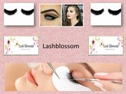 Beautiful Mink Lash Extensions Services by Lash Blossom
