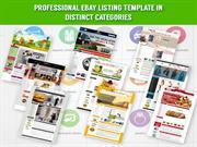 Professional EBay Listing Template In Distinct Categories