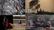 2016- Pictures of the month_MARCH -Mar 01 - Mar 08