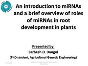 miRNAs and its roles in plant root development