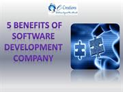5 Benefits of Software Development Company