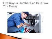 Five Ways a Plumber Can Help Save You Money