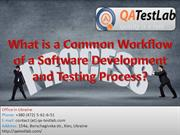 What is a Common Workflow of a Software Development?