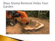 Ways Stump Removal Helps Your Garden