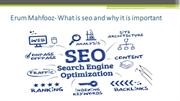 Erum Mahfooz- What is seo and why it is important