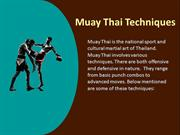 A Brief Synopsis Of Muay Thai Techniques