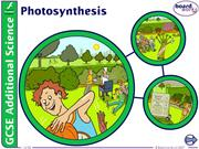 8.1 Photosynthesis 2016