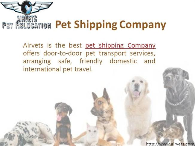 Pet Shipping Company Authorstream