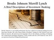 Brodie Johnson of Merrill Lynch - A Brief Description of Investment Ba