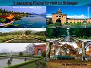 7 Amazing places to visit in srinagar