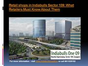 Indiabulls Sector 109: What Retailers Must Know About Them