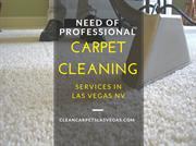 The Importance of Hiring Professional Carpet Cleaners & C