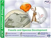 16.3 Fossils and Species Development BW 2016