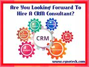 Are You Looking Forward To Hire A CRM Consultant?