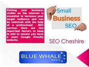 Everything You Need To Know About Seo Cheshire
