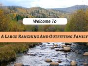 Guided Elk Hunts and Outfitters In Colorado